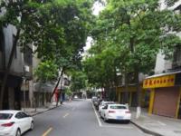 月桂二路 51方 临街旺铺 20年的租户没有转手过 稳定投资 现在带租出售55万