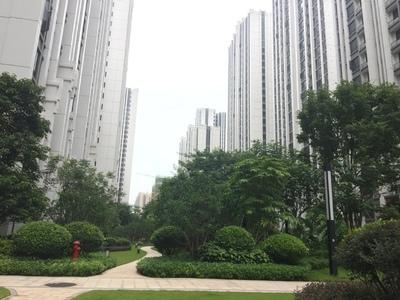 汇信华府 88方卖90万 南向 送全屋家私家电 豪华装修 满两年低税
