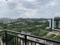 兆丰豪庭 三广附近 中心地段 靓户型 南北对流 95万