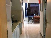 免租一个月 首次出租 新动力广场复式公寓 实用50方 1房1厅 家电齐