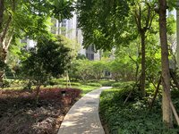 汇信华府 单间精装公寓出售 产权70年 40.44方售35万 欢迎看房