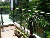 出售创鸿林海尚都2室2厅2卫89平米 精装修70万住宅
