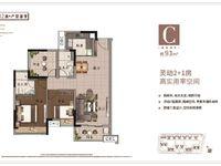 远洋天娇 靓楼层 93方 3房 南向 精装修 一手楼 仅售112万